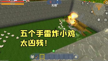 迷你世界:五个手雷扔到小鸡群里面,表妹都被吓到了!