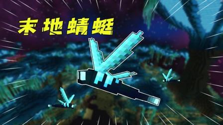 我的世界:MC猛男必备模组!末地夜光蜻蜓太梦幻