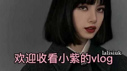 琐碎日常VLOG/好物推荐/声控/学习日常(小紫)