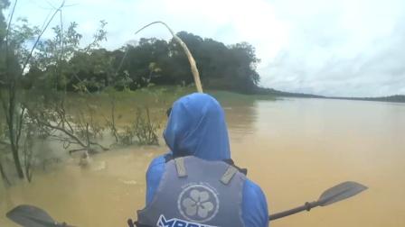 再贵的鱼竿,都比不上这大树枝,硬拉大鱼无压力!