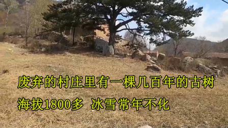 房车河北旅行,这里海拔有1800多,废弃的村庄里这应该算是奇观了