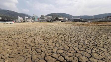 台湾遭遇五大灾难,蔡当局仍然无动于衷,施政无能的表现一览无遗