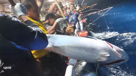真实南海钓鱼,深夜中条百斤大鱼,几个大汉合力才把鱼拉上船