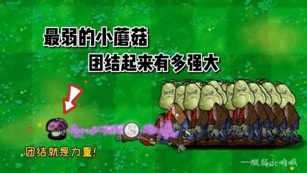 植物大战僵尸:当最弱的小蘑菇团结起来,会有多强大?