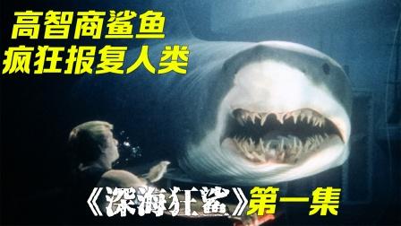 女博士乱改鲨鱼脑容量,导致鲨鱼智商过人