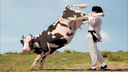 这三只会功夫的动物,你觉得谁最奇葩?功夫奶牛都快被玩坏了
