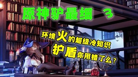 【原神驴最细】关于火的超级冷知识!盾不叠加?!