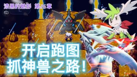 口袋妖怪漆黑的魅影,第26章02,神兽篇!收服小黑白龙!时空双神