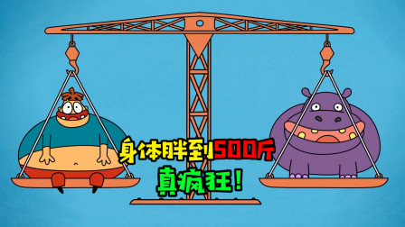 阿涵说:假如身体胖到500斤!变的跟个球一样,会是怎样的感觉呢