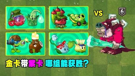 金卡带紫卡!4个组合,谁能击杀6阶僵尸?