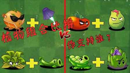 植物搭配之间的比拼,快来看看你最喜欢哪个?