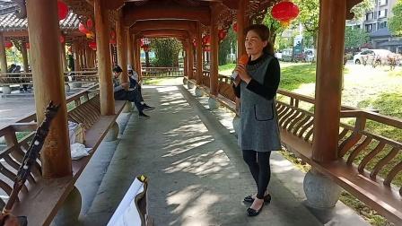 黄梅戏《一闻此言生死定》演唱:谢惠珠,创作:罗贵宏(官方认证《优酷》首批创作者)