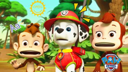 汪汪队立大功:火山爆发熔岩四处流淌的大灾难,汪汪队出发拯救无家可归的猴子