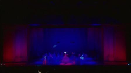 《Mozart l opéra rock 》摇滚莫扎特现场版