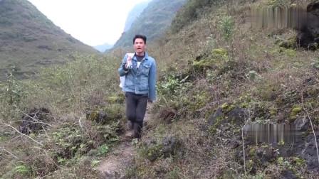 农村小莫:小莫大山里放地笼,出现隐秘洞穴,你见过这么深的洞穴吗?
