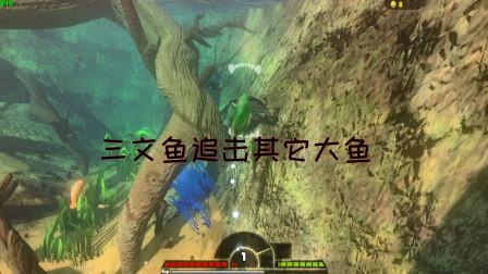 海底大猎杀:三文鱼河流大猎杀伤害不够能吞噬巨型大鱼吗