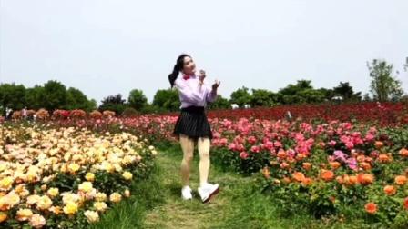 丽梦舞蹈队个人视频舞蹈爱的路上千万里南阳世界月季大观园录制!