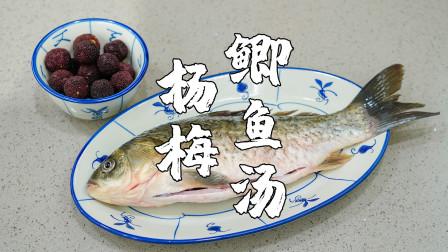 杨梅新吃法,杨梅鲫鱼汤,汤水鲜甜不腥
