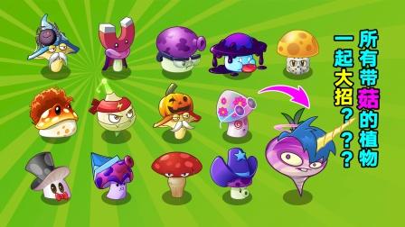 植物大战僵尸:13菇一起开大有多恐怖?