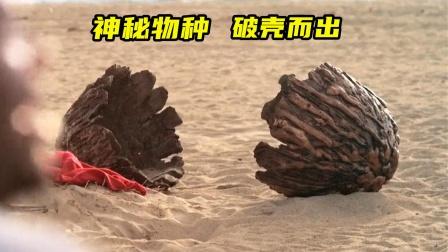 一群作死青年从海边捡回一个蛋,一夜之间人死了一半!惊悚电影