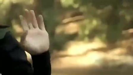 影视:我是个忍者,只是长得像王大锤