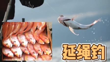 延绳捕鱼,每一条鱼都靠手拉上来!