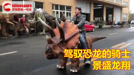 快乐的恐龙骑士 - 驾驭三角龙的骑手