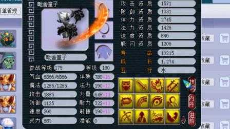 梦幻西游:这是梦幻鸟王,号上全是自己打造的12技能林中鸟宝宝!