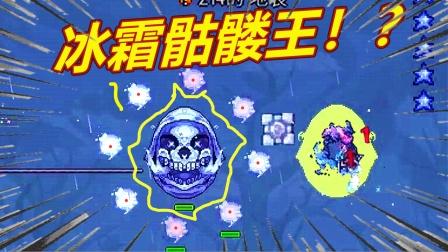 泰拉元素觉醒10:冰雪骷髅头boss!靠运气也能赢!