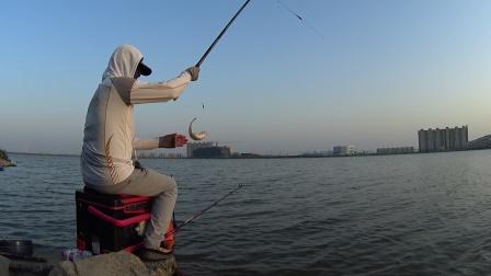 刚换长竿,鱼钩立即被拉断了