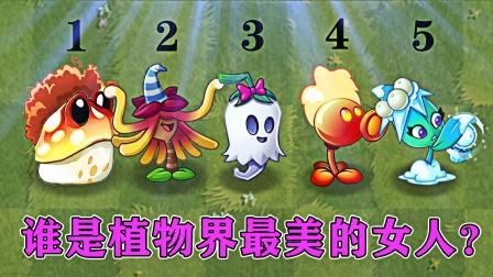 植物大战僵尸:植物界谁是最美的女生?金蟾菇:开美颜!