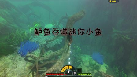 海底大猎杀:鲈鱼攻击力不够能直接吞噬其它鱼类吗