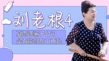 《刘老根》夏雨惨遭骗子公司诈骗,是否能够东山再起