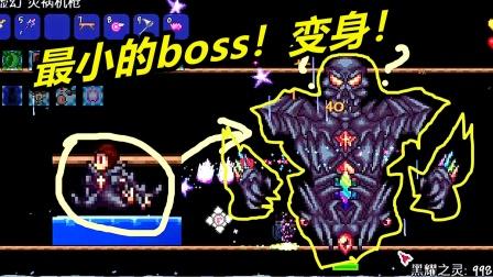 泰拉元素觉醒11:最小的boss!怎么都打不到他!