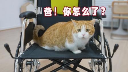 因用鲱鱼罐头臭醒熟睡女朋友,男子坐上了轮椅.....