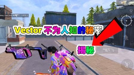 Vector逆袭之路,拥有此枪械可以让你勇往直前,成为第一