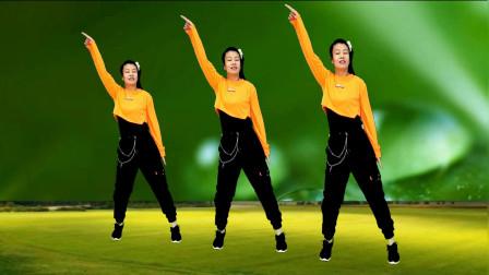 经典热曲广场舞《野花香》,完整版,舞步简单迷人