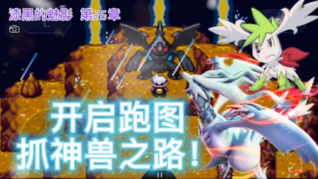 口袋妖怪漆黑的魅影,第26章06,神兽篇!收服小黑白龙!时空双神