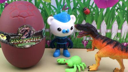 拆恐龙扭蛋,海底小纵队巴克队长拼积木霸王龙!