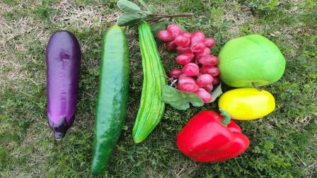 和恐龙老师一起去果园里认识葡萄丝瓜等美味果蔬