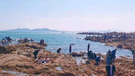 青岛旅游:去奔赴一场海边的浪漫