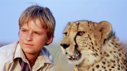 金钱豹逃到人类城市,男孩捡到后送它回家,冒险片《小豹杜玛》