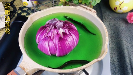 泥鳅水莲花
