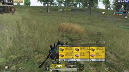 智玩酱:野区打倒了一个人,包里有三把信号枪,一会儿进决赛圈打