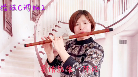 0004《爱情一阵风》笛子演奏