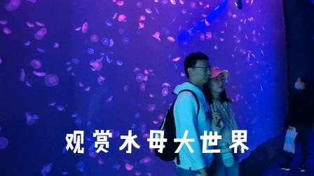 青岛世博园观赏水母大世界