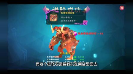 周姐解说:创造与魔法2312期,龙血拳皇3到4阶技能讲解!