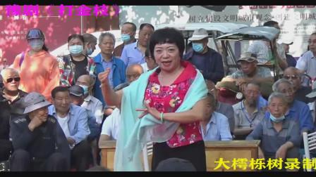 豫剧《打金枝》(全场、上)平顶山市鹰城群星豫剧团演出