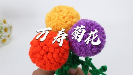 它有多个美好花语, 健康, 长寿, 友情, 爱情--它就是万寿菊
