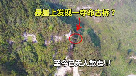 贵州大山上发现一古木桥,两边都悬崖摇摇欲坠的,至今已无人敢过!